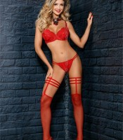 AXAMI V-7504 Garter with stockings